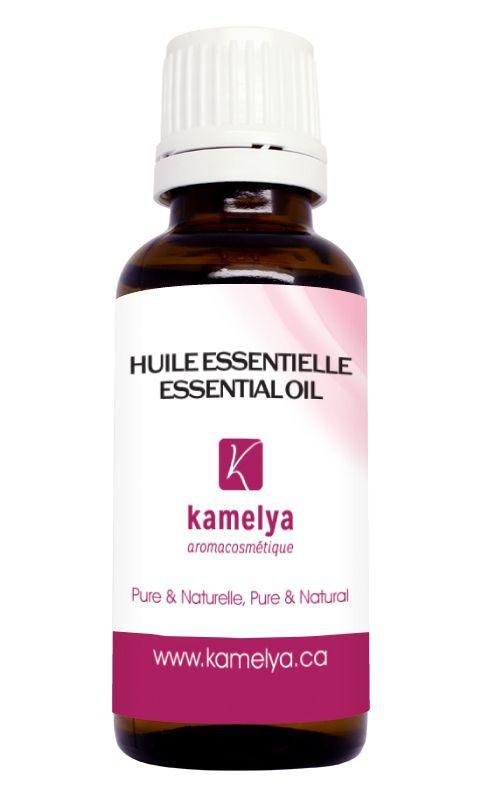 L'huile essentielle de gaulthérie possède de nombreuses propriétés. Elle est anti-inflammatoire, anti-rhumatismal, antispasmodique et antidouleur. Elle soulage les douleurs musculaires associées aux rhumatismes musculaires, à l'arthrite inflammatoire, à l'arthrose vertébrale et aux tendinites. En diffusion atmosphérique, l'huile essentielle de gaulthérie créer une ambiance chaleureuse.  #aromathérapie #santé