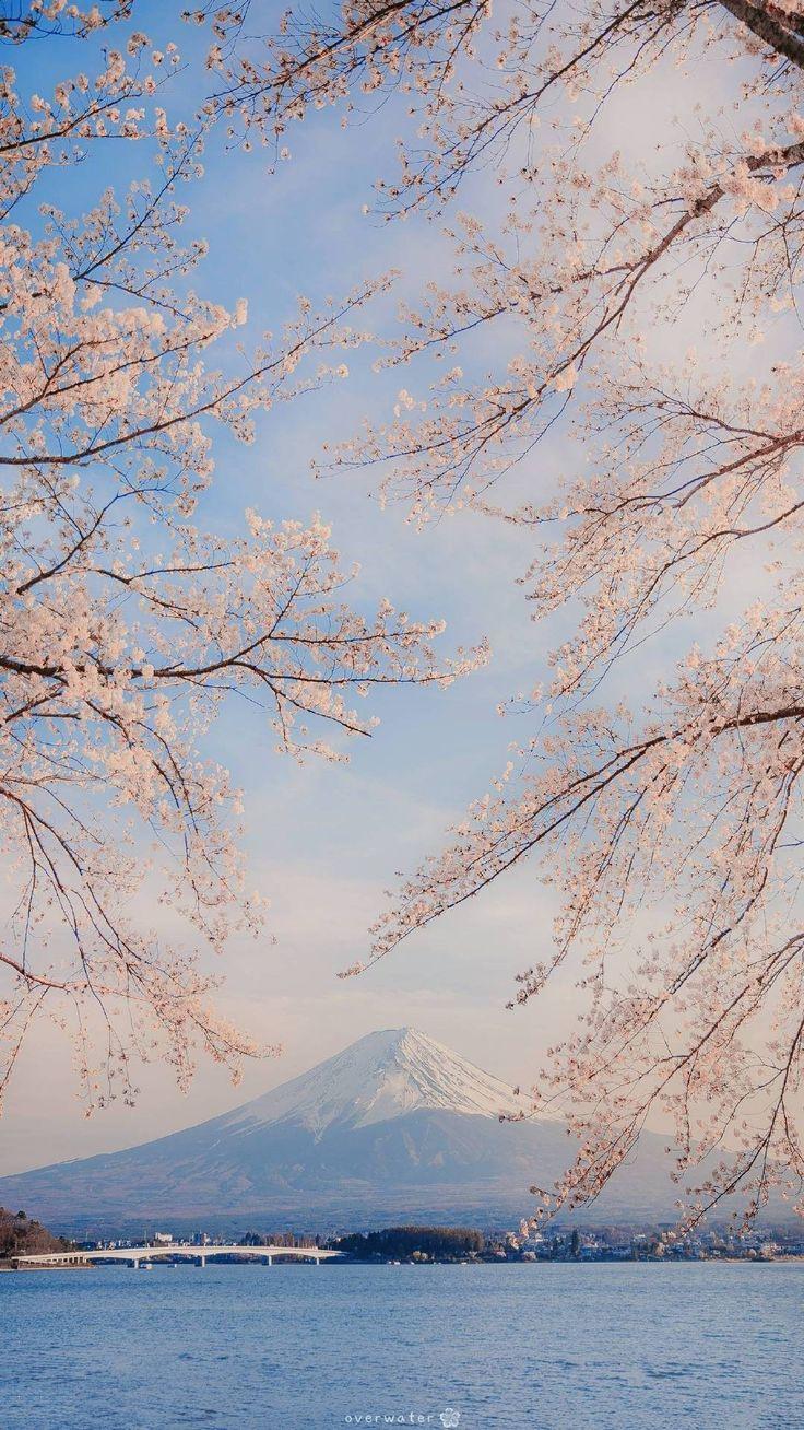 Pin oleh K T di Cảnh đẹp di 2020 Fotografi alam