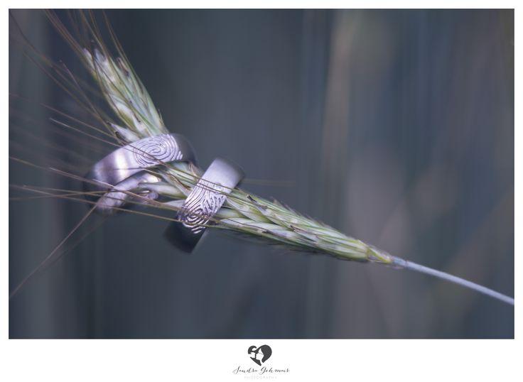 #ring #weddingring #wedding #groom #bride #braut #bräutigam #geschenk #present #love #forever #fuerimmer #engagement #engagementring #verlobung #verlobungsring #silver #gold #weddinghour #weizen #ideas #photographyideas #photography #wheat #fingerabdruck #fingerprint