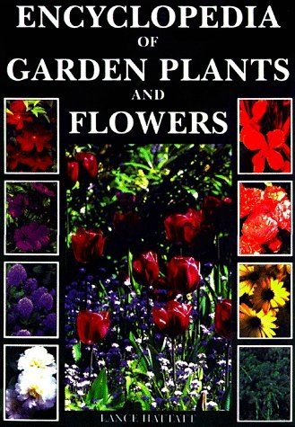 10 Best Images About Inspiring Gardens Amp Flowers On