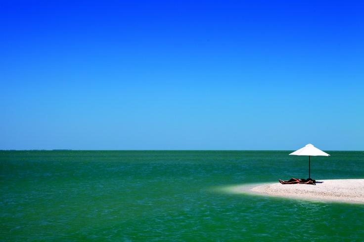 Places To Eat In Apollo Beach Florida