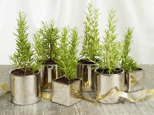 15+ Best Ideas About Holiday Centerpieces On Pinterest