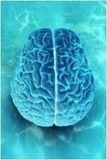 Psicología y Neuropsicología Antioquia