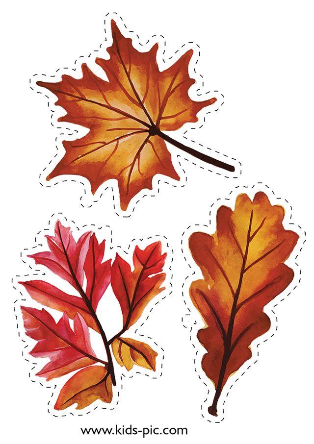 Шаблоны Осенних Листьев Для Вырезания | Осенние листья ...