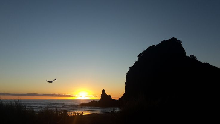Piha beach in West Auckland, one of my favourite places.