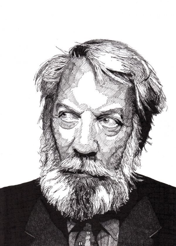 portraits-en-hachure-au-stylo-encre-de-Rik-Reimert-4