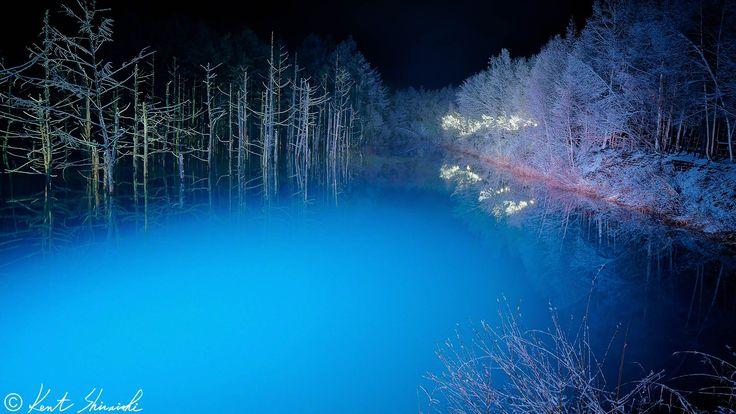 僕の予言通り昨夜は「とても美しい青い池」でした!