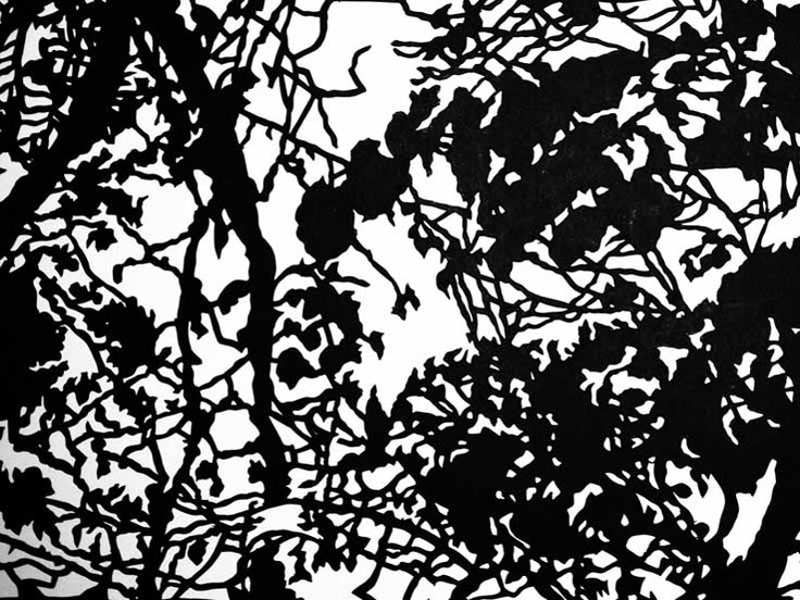 Junction Art Gallery - Kate Hipkiss 'Up in the Trees' papercut