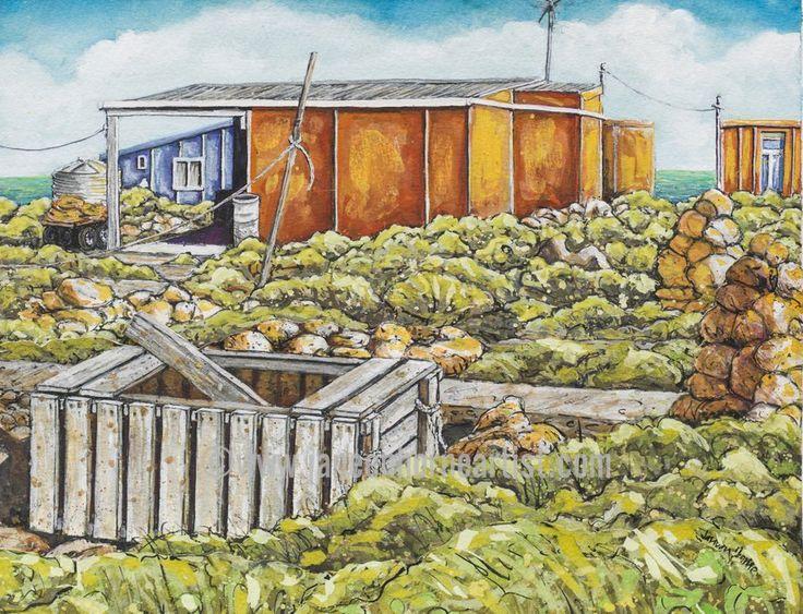 Little Rat Island - Abrolhos Islands - W.A. - Giclee print - www.janeenhorneartist.com