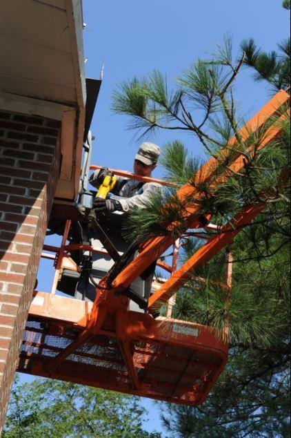 Tree Trimming Service Cost Wichita Ks