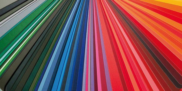 colour&line