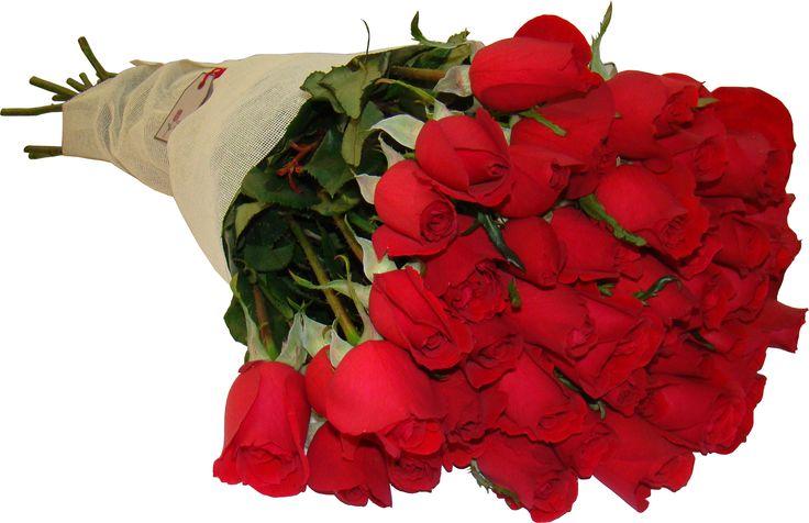 Ramo de 50 rosas rojas de Flores Toluca