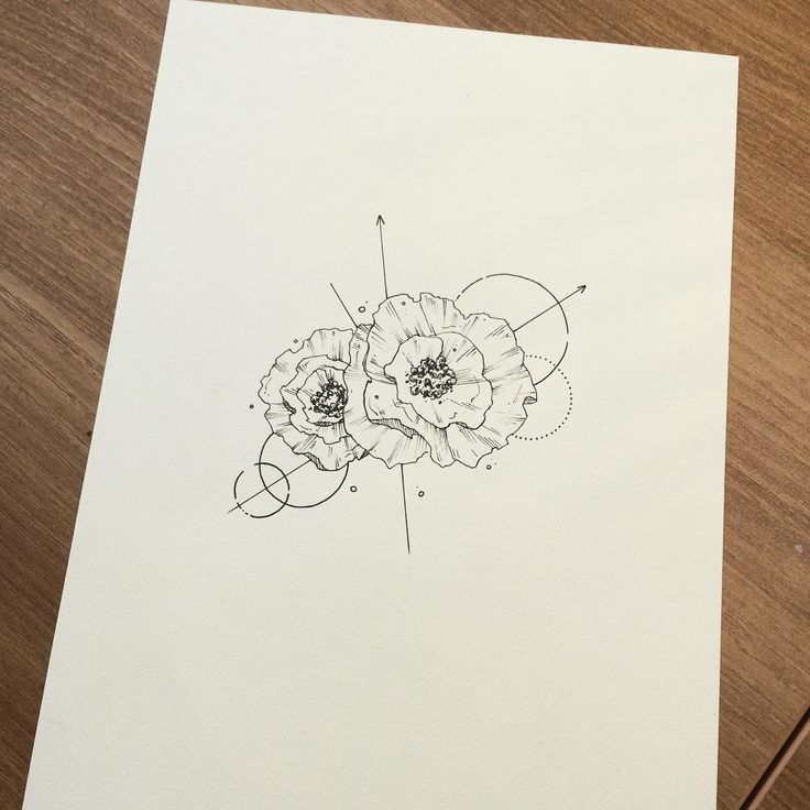 Poppy Line Drawing Tattoo : Best poppy tattoo images on pinterest poppies