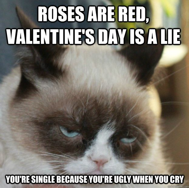 Valentines Day, also known as Single Awareness Day, has brought out the Grumpy Cat and we all know what he thinks of this day, but here are some of the best Frumpy Cat Anti-Valentine's Day memes!