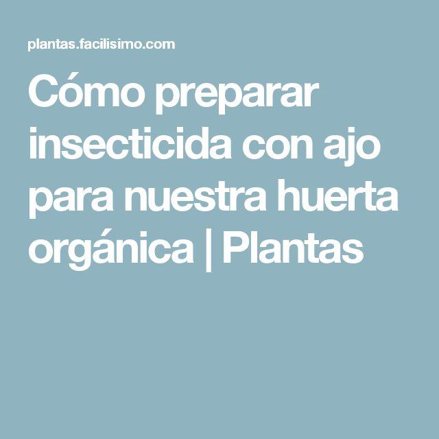 Cómo preparar insecticida con ajo para nuestra huerta orgánica | Plantas