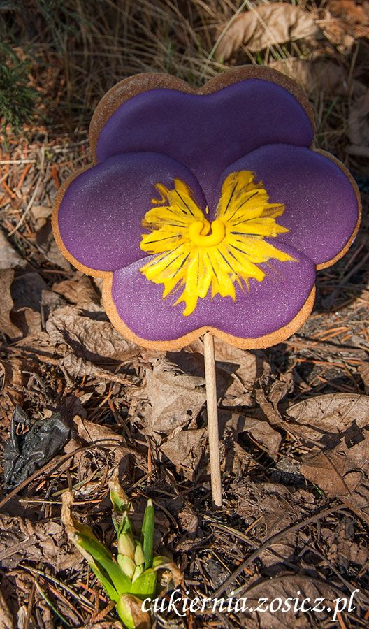 cookie-pansy