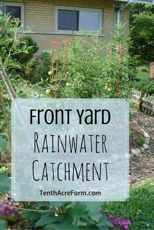 Catching water in the landscape is in many cases more efficient than using rain barrels. Here's how one suburban homestead used water from their roof to create a front yard garden.