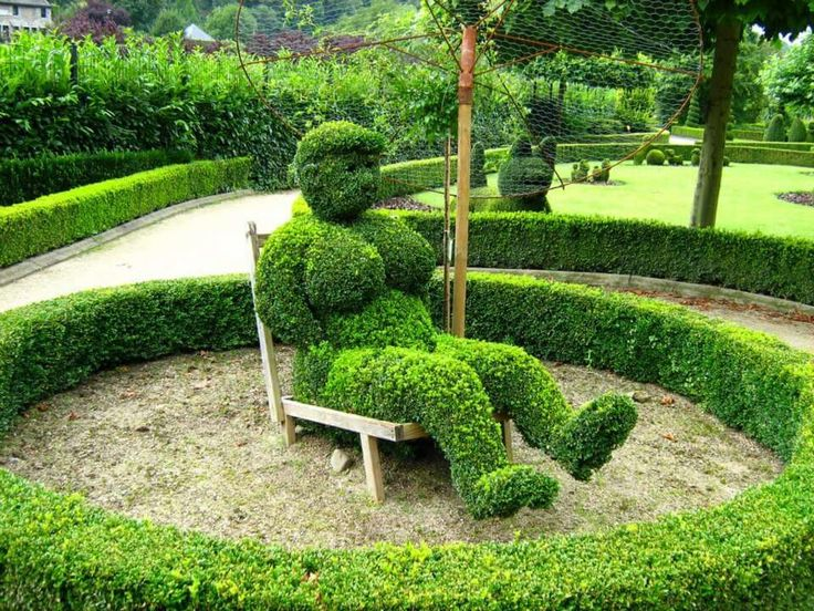 Marvelous Topiary Designs Part - 8: Topiary Is The Horticultural Practice Of Training Live Perennial Plants By  Clipping The Foliage And Twigs Of Trees, Shrubs And Subshrubs To Develop  And Mai