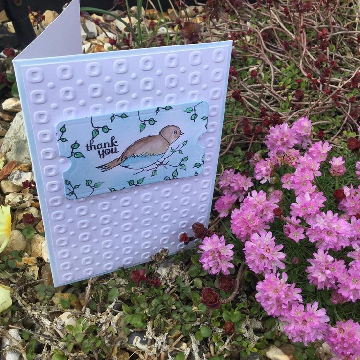 """0 Likes, 1 Comments - Clare Lloyd (@misscraftmad) on Instagram: """"Loving the new free stamp from @craftstampermag even it was wasn't supposed to be on this issue!…"""""""