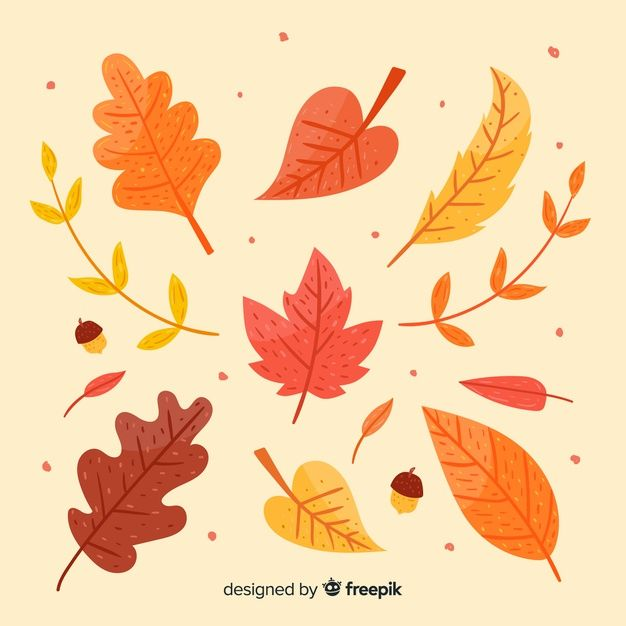 Download Hand Drawn Autumn Leaves Collection For Free Hojas De Otono