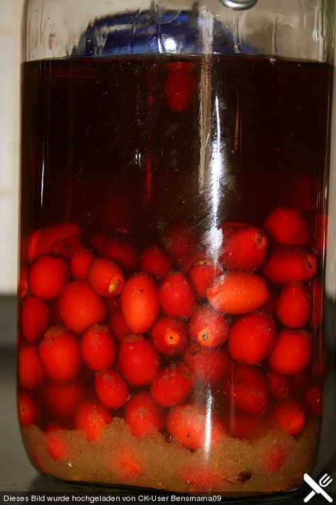 Hagebuttenlikör, ein gutes Rezept aus der Kategorie Herbst. Bewertungen: 8. Durchschnitt: Ø 3,8.