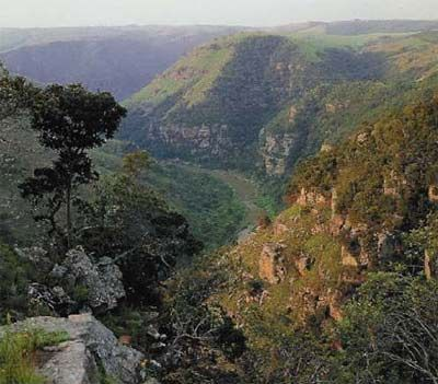 Panoramic view of Fynbos area