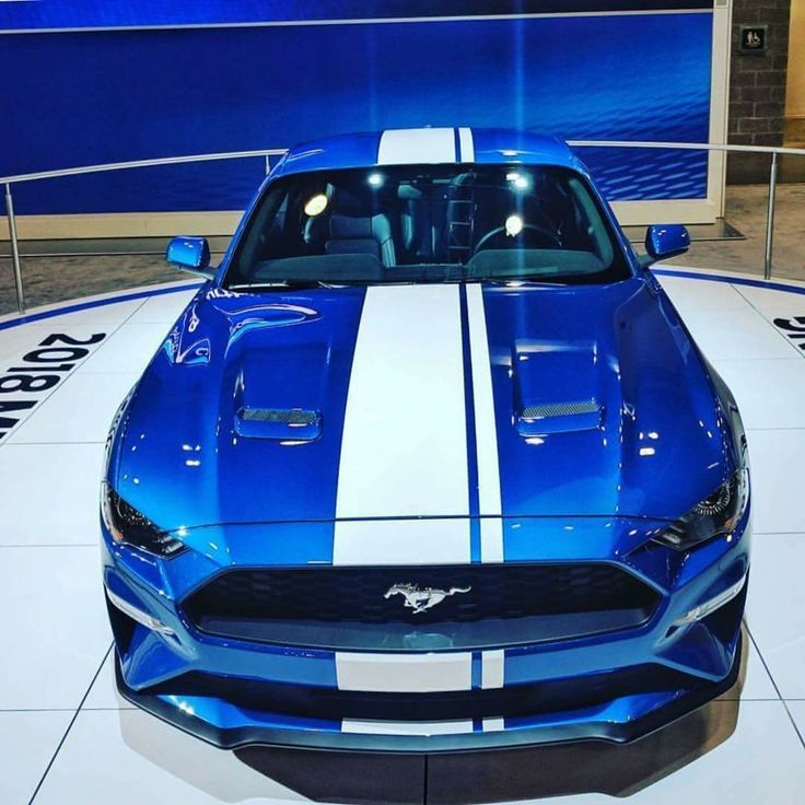 Best 25 Blue Cars Ideas On Pinterest: Best 25+ Blue Mustang Ideas On Pinterest