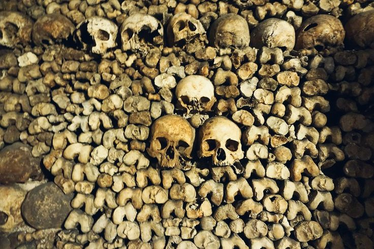 Exploring the Catacombes de Paris