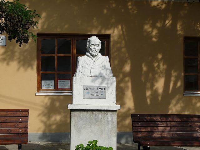 Statue of doc. Dombi Sámuel