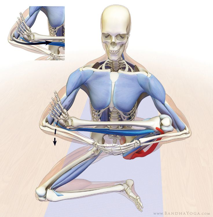 How to Release the Hip Internal Rotators for Padmasana (Lotus Pose)