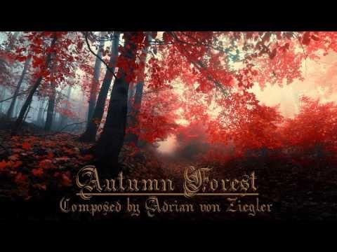 Autumn Forest (relaxing celtic music) • Adrian von Ziegler