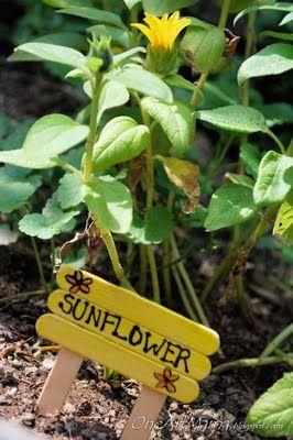 Marcadores de plantas para el huerto y el jardín fáciles de hacer por ti mismo (DIY)