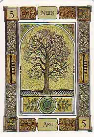 The Ash can be seen as spanning both microcosm and macrocosm, the little world and the great world. :  as above, so below