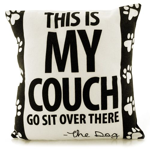 THIS IS MY COUCH. GO SIT OVER THERE - THE DOG PILLOW