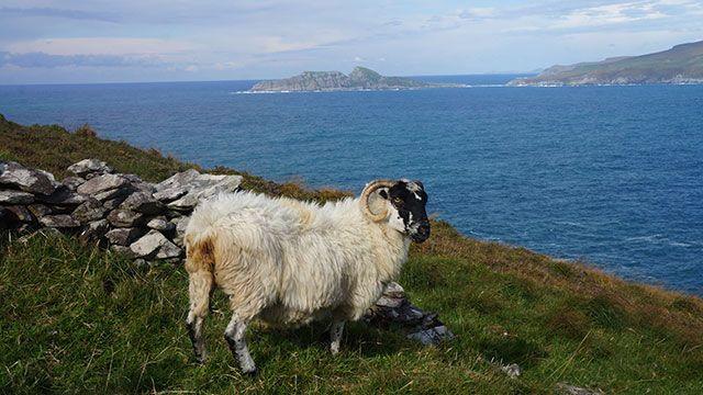 Must-Watch movies filmed in Ireland