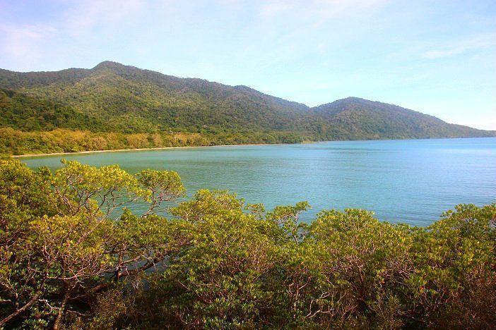 POST NOVO! Quando dois patrimônios da Unesco se encontram: a Floresta Tropical Daintree e a Grande Barreira de Corais da Austrália!  Saiba mais em  http://ift.tt/1ZbGH4z ou o link no nosso perfil.  #cairns #daintreerainforest #unesco #mossmangorge #australia #pegadasnaaustralia #pegadasnaestrada #missaovt #vocenooff #viajenaviagem #landscape #liveoutdoors #livealifeyouwillremember #trip #natgeotravel #awesome #yhaaustralia #travelblog #lonelyplanet #viajero #turismo #roteiro #roadtrip…