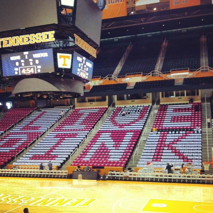 Live Pink @ Tennessee Lady Vols game | Lady vols ...