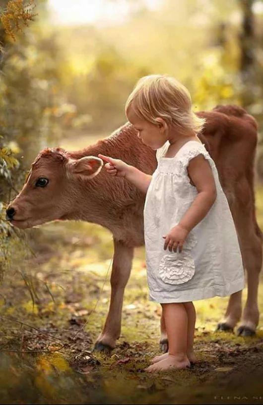 Adorables <3 No debería haber diferencia alguna entre ambos, los dos son niños hermosos.