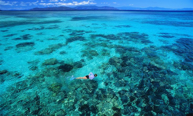 Snorkeling in the Great Barrier Reef   http://www.tangerinetravel.com/  #tangerinetravel #dreamvacation