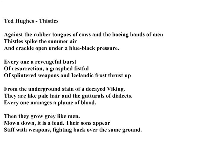 Thistles - Poem by Ted Hughes