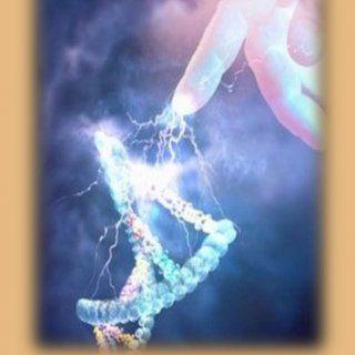Dios Creador   Dios de Momificación   Diosa del Nilo y del Agua  4. Dios Solar Creador  5. Dios Solar Creador  6. Diosa Lunar Protectora del Hogar  7. D. http://slidehot.com/resources/loteria-cartas-individuales.63544/