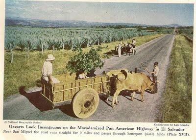 Historia de El Salvador: EL CAFE EN LOS AÑOS 1940