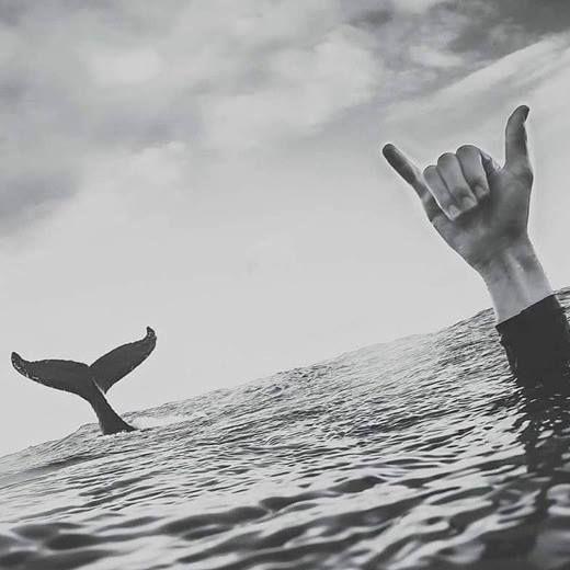 La foto de surf de heidimariejohn