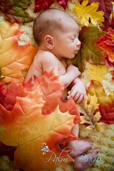 Ideas For Fall Newborn Pictures