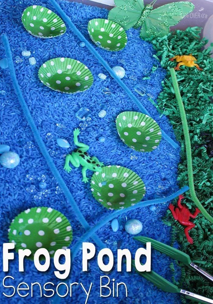 This frog & pond habitat sensory bin is a great way to learn about frog life cycles and the habitat they live in.
