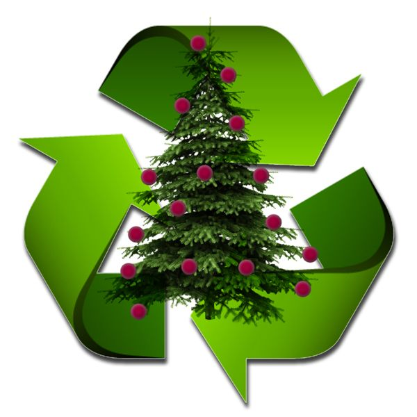 Christmas Tree Recycling Uttlesford : Best recycling images on ideas