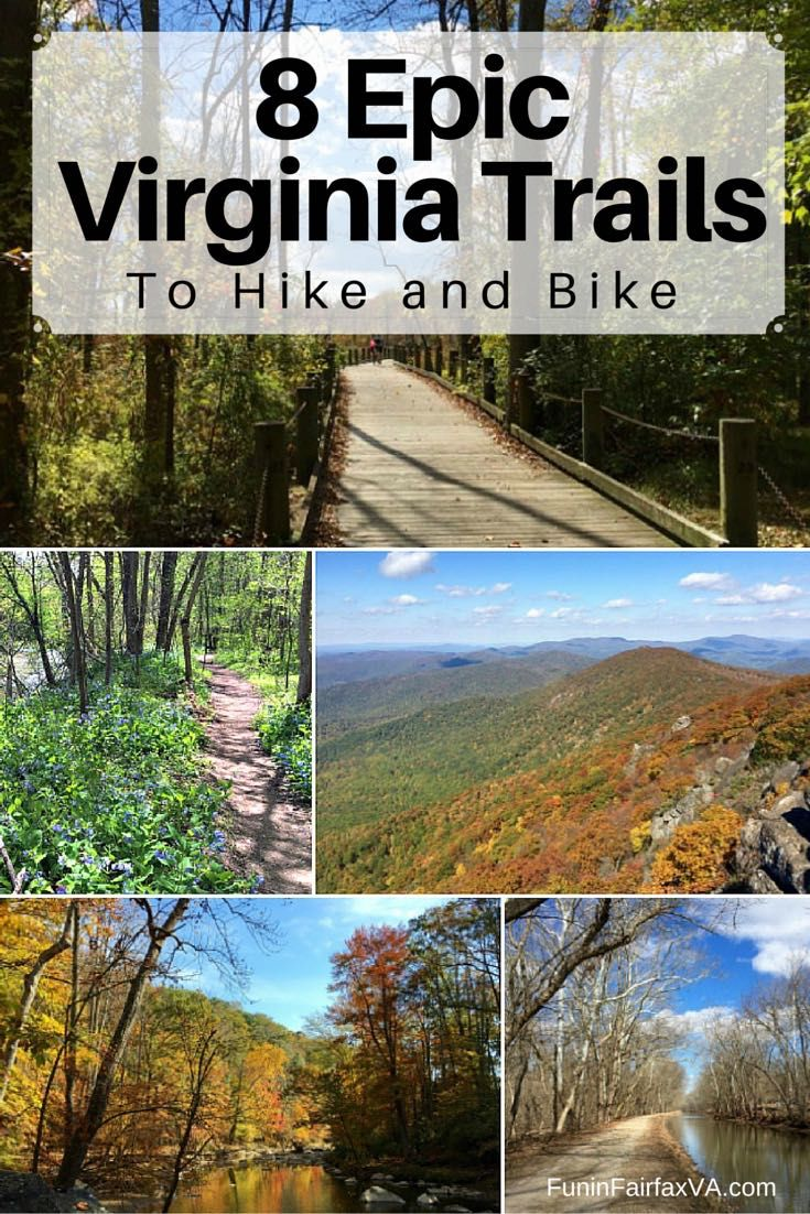 These 8 epic Virginia trails offer gorgeous scenery, interesting history, and a variety of hike and bike options, all within 2 hours of Washington DC.