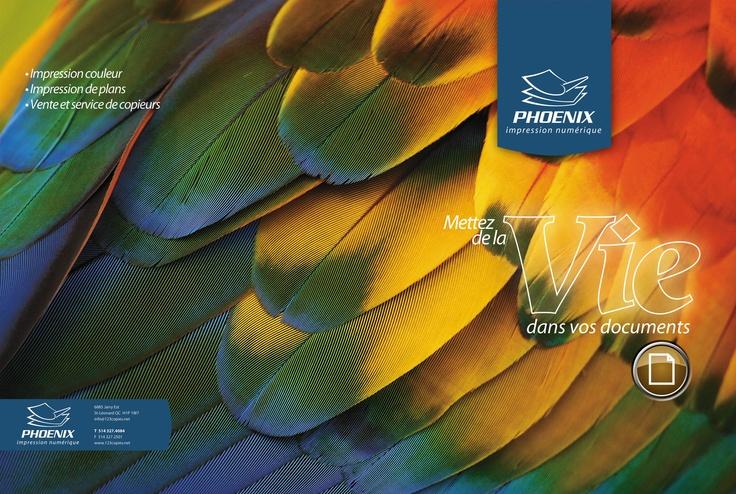Pochette corporative pour Impression Phoenix