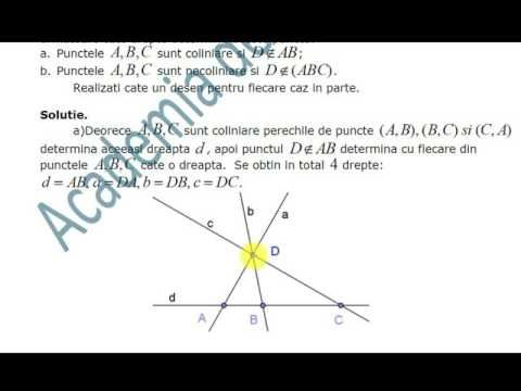 VIII-Geometrie-Puncte, drepte, plane. Determinarea dreptei si planului-F...
