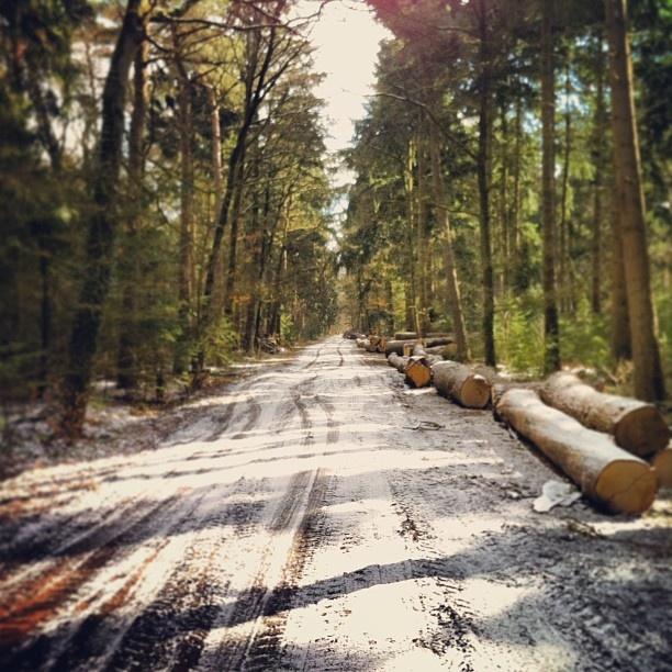 Old road Hofdijk Boekelo near Enschede - @marcel_tettero- #webstagram